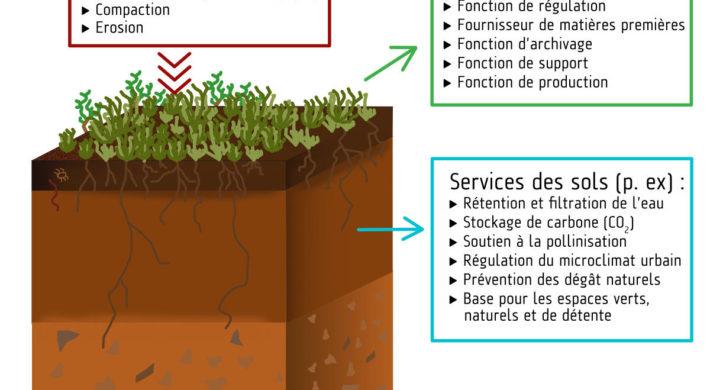 Qualité des sols